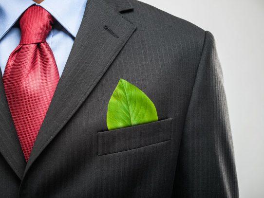 Gestão Ambiental: o que é, o que faz e quanto ganha?